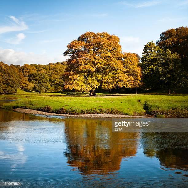 English landscape: autumn colours