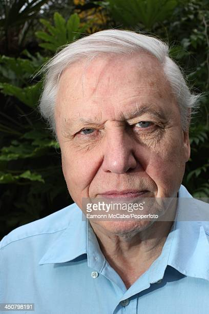 English naturalist and broadcaster Sir David Attenborough at his home in Richmond London 17th September 2008