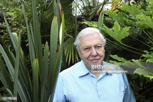 David Attenborough Pictures Getty Images