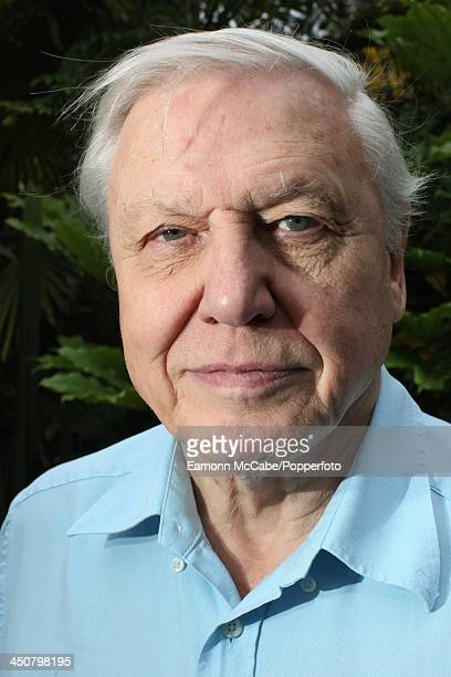 David Attenborough Stock Photos And Pictures Getty Images