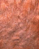 English Oak Burl