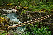 Englishman River Falls Provincial Park near Parksville on Vancouver Island in British Columbia - Canada