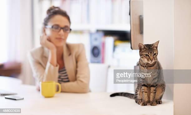 Profitant de la compagnie de son chat