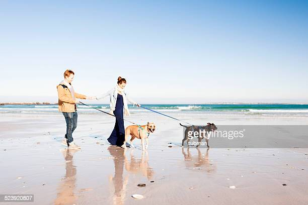 Profitez de la journée avec les chiens