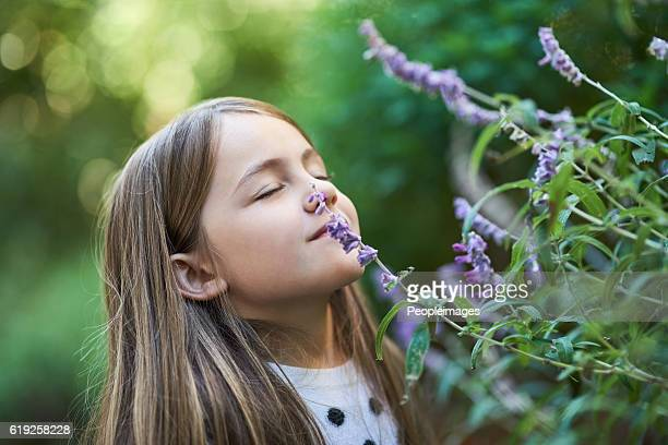 Enjoying the soothing scent of lavender