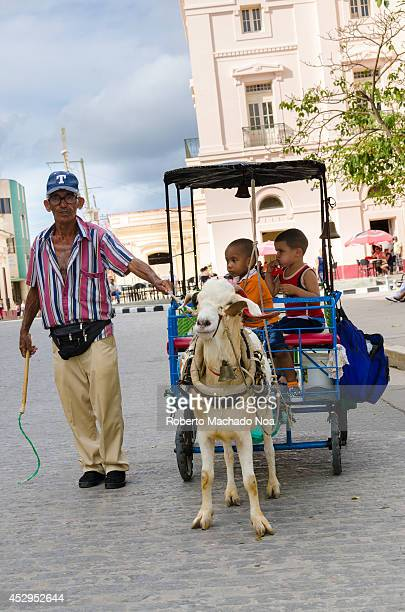 Entertaiment for children goat drawn carriage after the Communist Goverment implemented economic changes many went into the business of...
