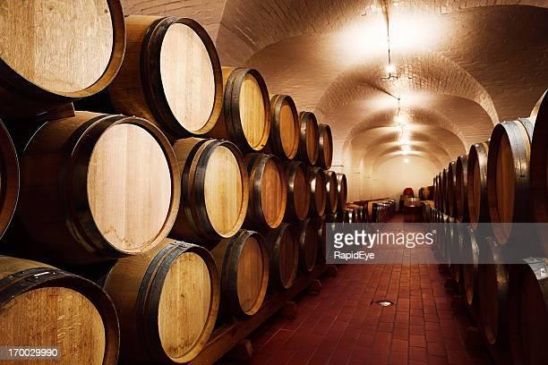 Gesamte grape harvest sanft abgehangen in Wein im Weinkeller