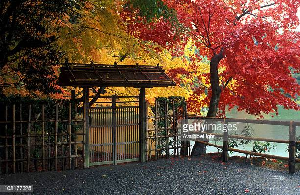 Entrace to Japanese Garden With Autumn Trees