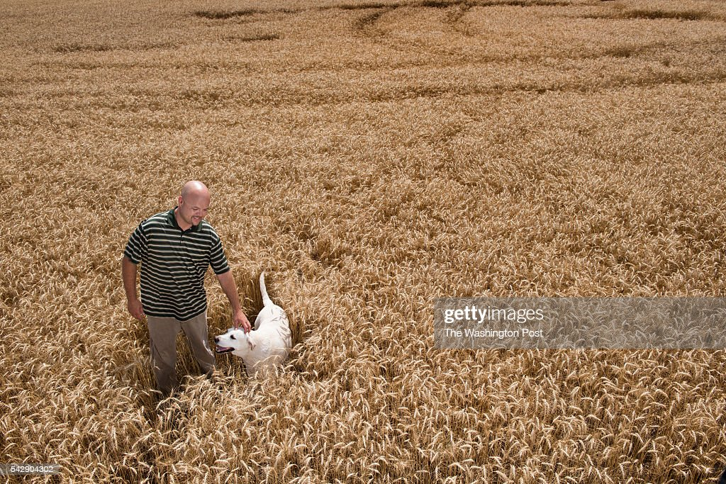 Entrepeneur Charles 'Charlie' Mattingly with his dog Boogles in a wheat field where he hopes to grow medical marijuana in St. Mary's County, MD on June 21, 2016. Mattingly is among numerous applicants who would like a state license to grow, process and distribute medical marijuana. The State hopes to award licenses to a select number of growers this summer.