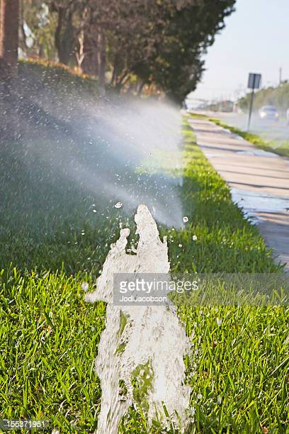 Enviormental: Wasting water