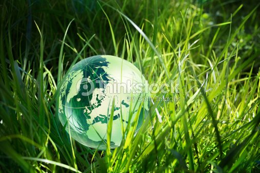 Environment concept, glass globe in the grass : Stock Photo