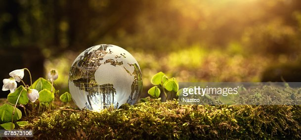 Environment conservation concept : Stock Photo