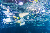 Plastic bags, bottles and cups float in the Ocean.  Seemingly harmless, they represent the massive environmental issue that is Global Ocean Pollution.  Plastic in the Ocean is said to be one of the la