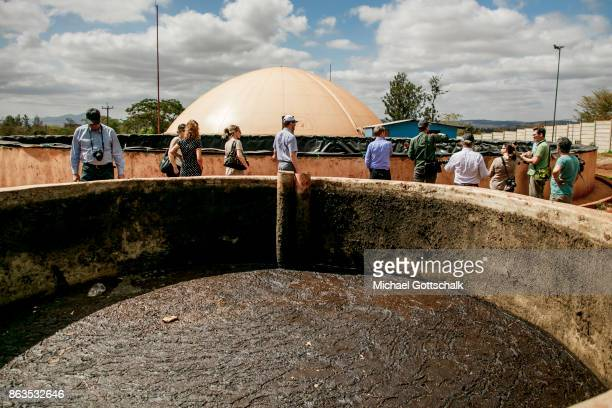 Environmentally friendly and renewable energy bio gas generation in the Thika area at an avocado oil mill of Olivado company on October 09 2017 in...