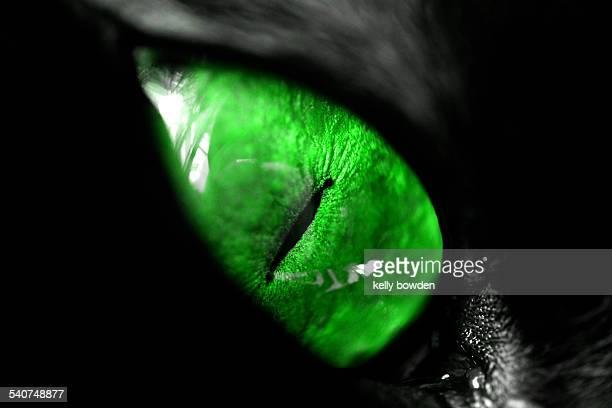 Envy green eyed monster