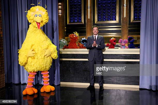 Sesame Street characters Big Bird Oscar the Grouch Murray Monster Cookie Monster Elmo Abby and Grover post with host Jimmy Fallon on September 11 2014