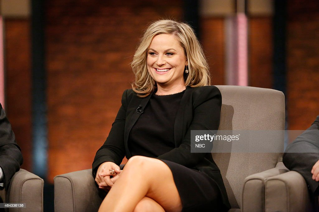 Amy Poehler of 'Parks and Recreation' during an interview on February 24 2015