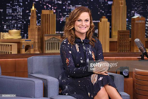 Actress Amy Poehler on December 9 2015