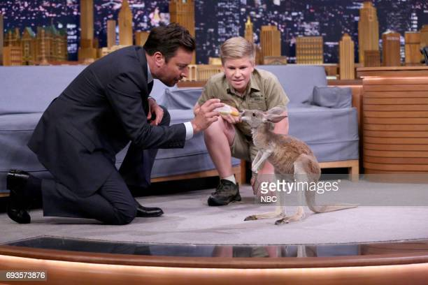 Host Jimmy Fallon during an interview with animal expert Robert Irwin on June 7 2017