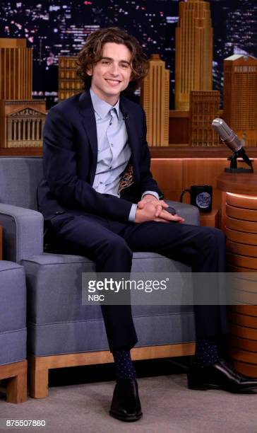 Actor Timothée Chalamet during an interview on November 17 2017