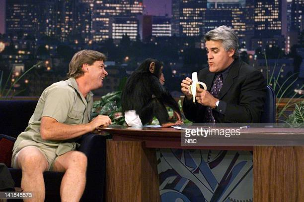 Wildlife expert Steve Irwin with a baby monkey during an interview with host Jay Leno on October 6 1999 Photo by NBC/NBCU Photo Bank