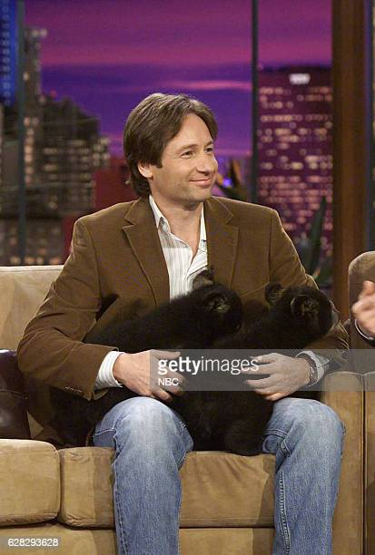 Actor David Duchovny during an interview on April 5 2004