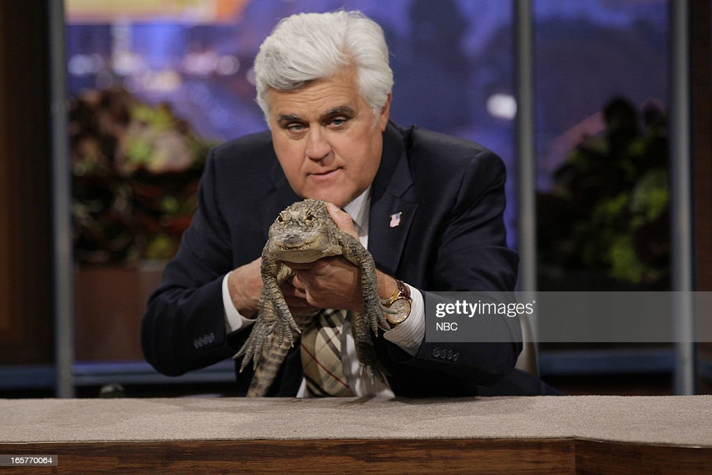 Host Jay Leno with a baby alligator on April 5, 2013 --