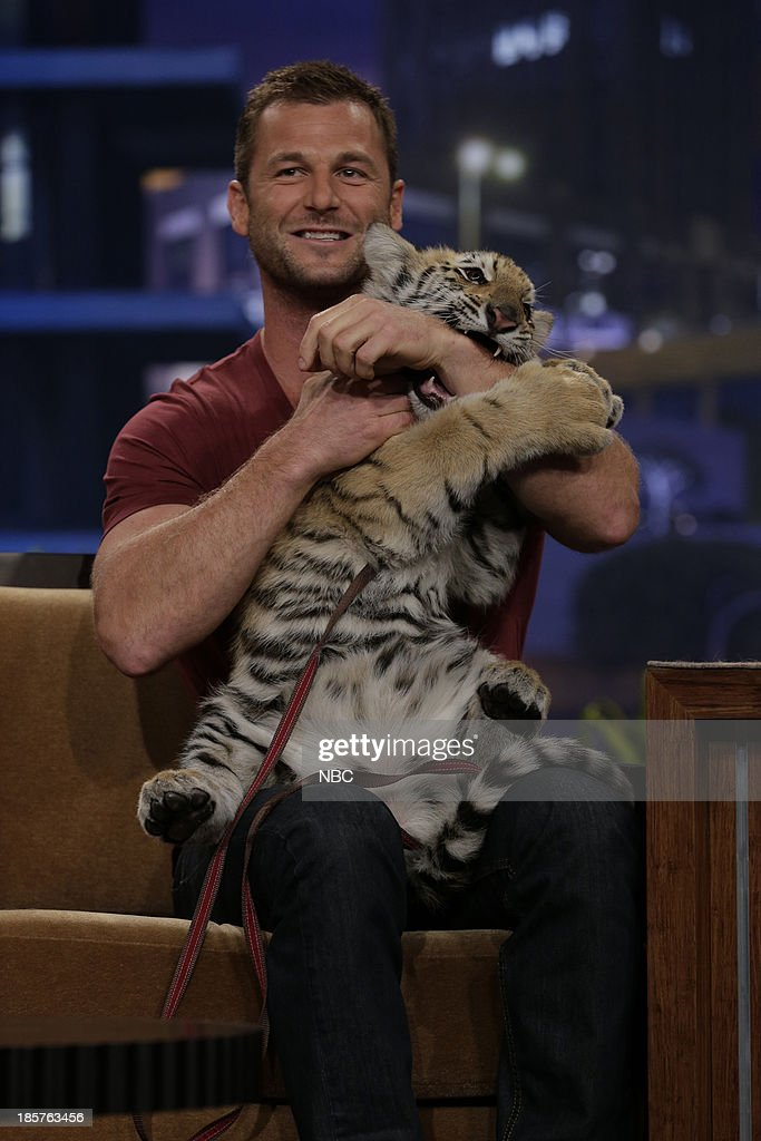 Animal expert Dave Salmoni with a bengal tiger during an interview on October 24, 2013 --