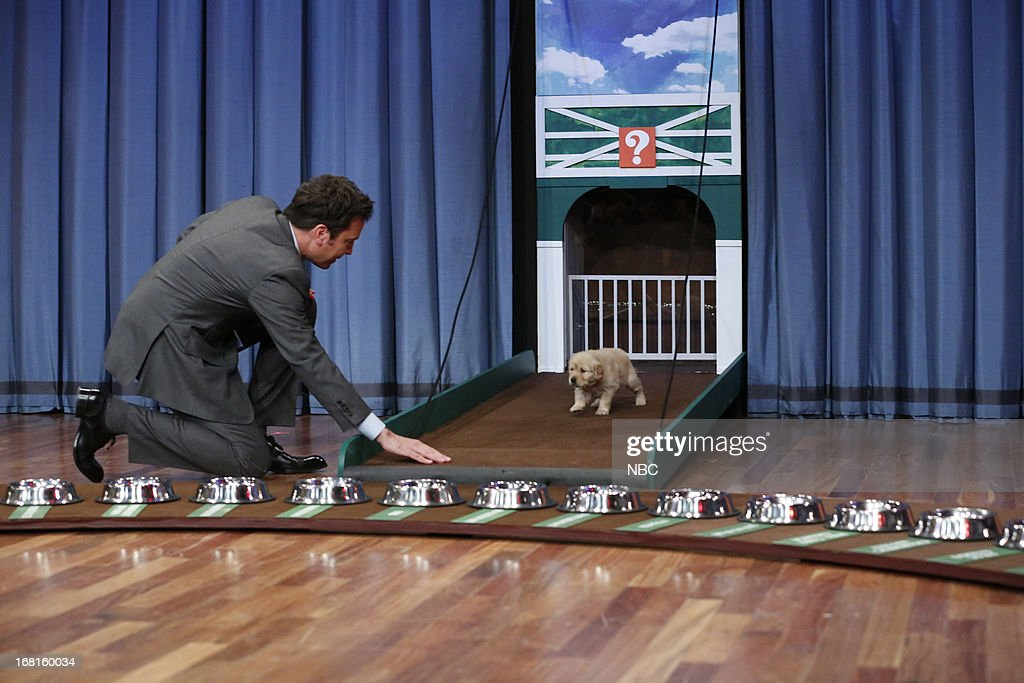 Host Jimmy Fallon during a skit on May 3, 2013 --