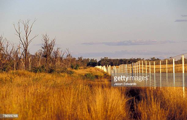 A Dingo fence protecting habitat for critically endangered Wombats.