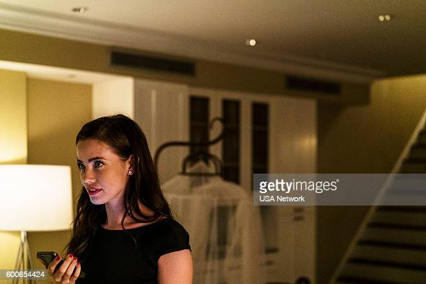 MR ROBOT 'eps28_h1ddenpr0cessaxx' Episode 210 Pictured Stephanie Corneliussen as Joanna Wellick