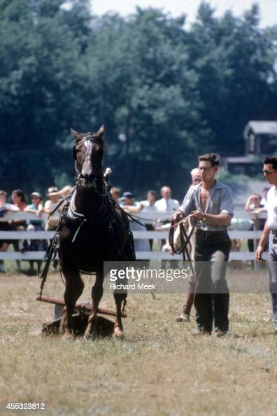 Northampton County Show Stock Photos And Pictures Getty
