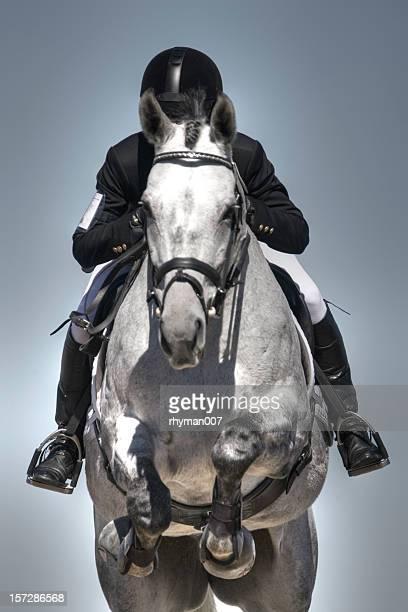 jumper de equitación