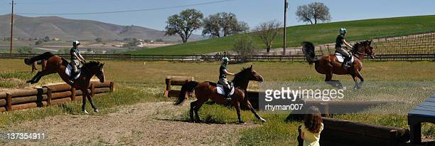 Equestrian Rider over through the obstacles