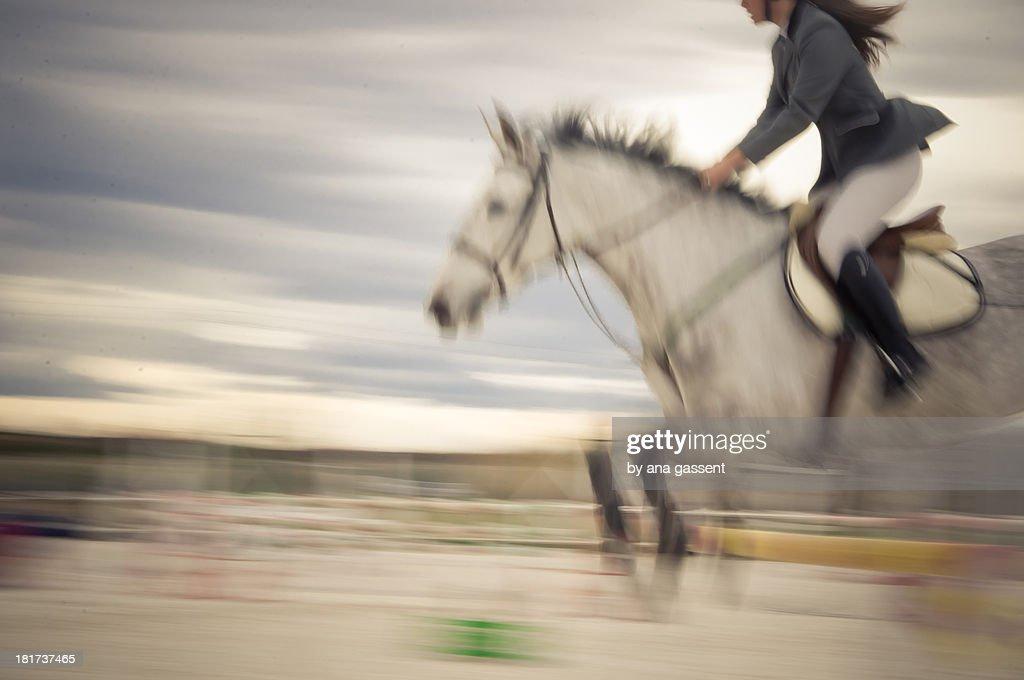Equestrian show jump