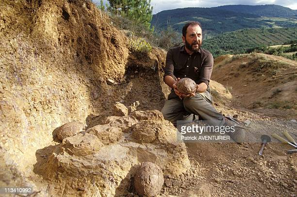 Eric Buffetaut Dinosaur Hunter On July 7th 1993 Eric Eric Buffetaut Excavating Eggs