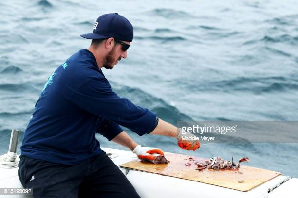 Eric Kelly cuts mackerel for chum during the North Atlantic Monster Shark Tournament on July 14 2017 in New Bedford Massachusetts The annual fishing...