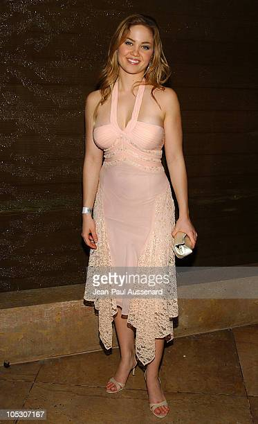 Erika Christensen during The 61st Annual Golden Globe Awards HBO Party at Beverly Hilton in Beverly Hills California United States