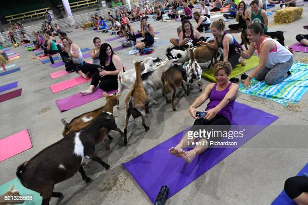 Erin Fahres right tries to take a picture of one of dozens of goats released onto the yoga floor during goat yoga at the Denver County Fair on July...