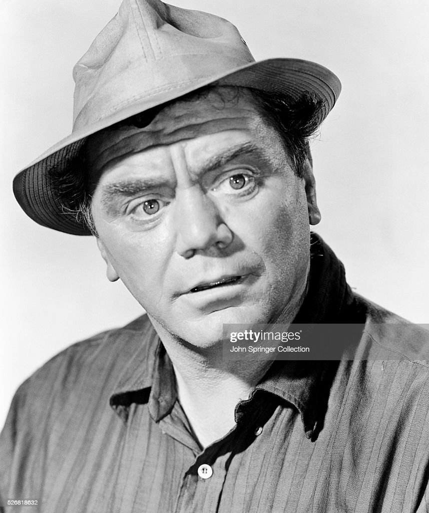 Ernest Borgnine in the movie Flight of the Phoenix.