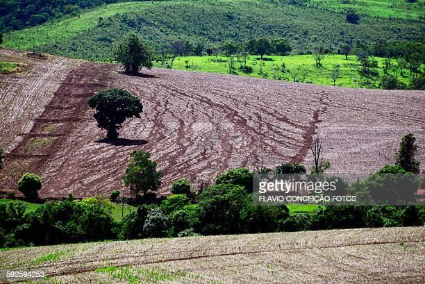 Erosion soil red Brazil