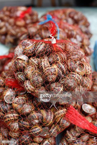 Schnecken-Schnecken zum Kochen im Sale in französischer Markt