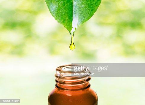 驚きのエッセンシャルオイルからリーフ.Aromatherapy ます。 : ストックフォト