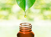 Essence water or oil dripping from a leaf to the bottle. Natural skin care, alternative medicine image.