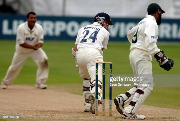 Essex captian Mark Pettini is cought out during the LV County Championship Division Two match at The County Ground Chelmsford Essex