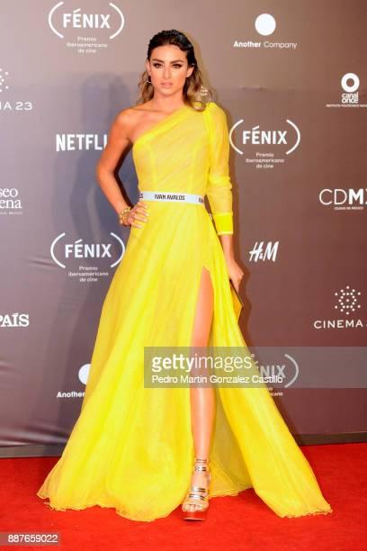 Estefania Ahumada poses during Fenix Iberoamerican Film Awards 2017 at Teatro de La Ciudad on December 06 2017 in Mexico City Mexico