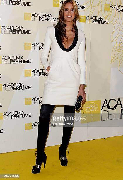 Estefania Luyk attends Academia del perfume awards photocall at Casa de America on November 20 2012 in Madrid Spain
