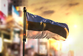 Estonia Flag Against City Blurred Background At Sunrise Backlight