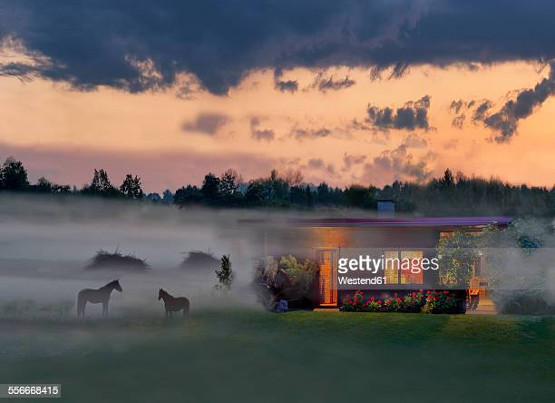 Estonia, lighted wooden house and horses in rural misty landscape