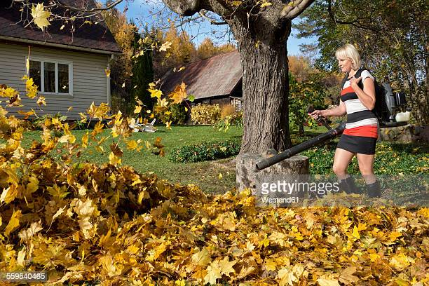 Leaf Blower Stock Photos and Pictures Getty Images